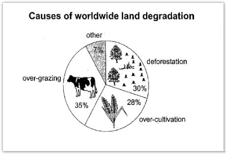 IELTS Academic Writing Task 1 Model Answer - Pie Chart - The main reason why agricultural land becomes less productive.